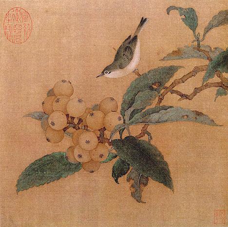 Loquats_and_Mountain_Bird